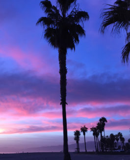 California: Venice Beach, Best Sunsets