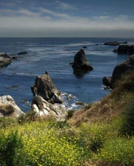 California Coast: Santa Maria, Pismo Beach