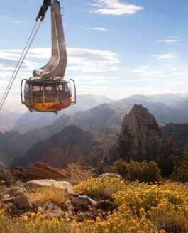 CA: Palm Springs Attractions & Natural Wonders