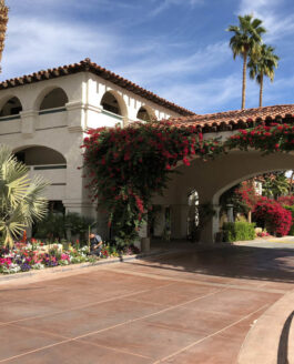 CA: Palm Springs, Downtown Hotels